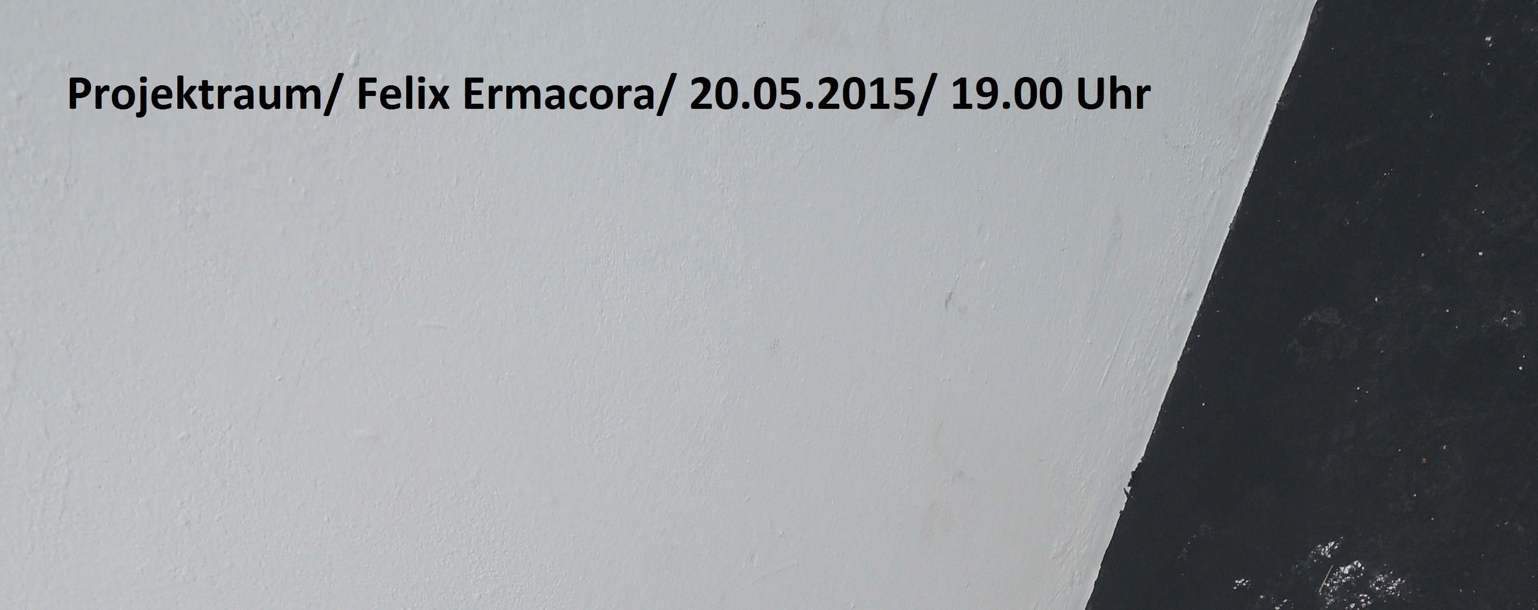 FlyerErmacora