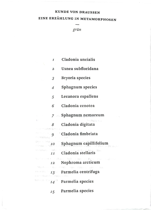 künstlerbuch bd 18 grün II